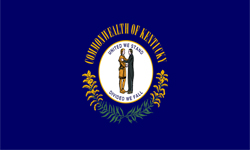 The state flag of Kentucky.